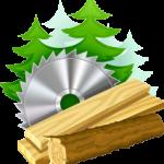 logo houtzagerijsalland png klein-2